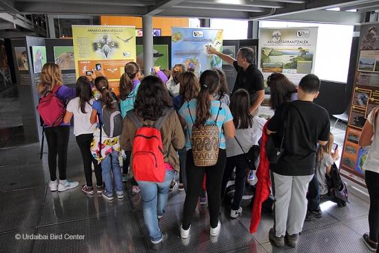 Más de 3000 escolares participan en 2017 en el proyecto de educación ambiental sobre el águila pescadora en Euskadi